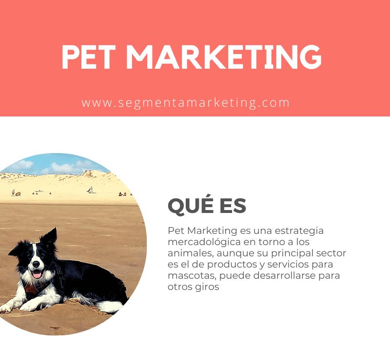 Lee más sobre el artículo Pet Marketing: una tendencia global