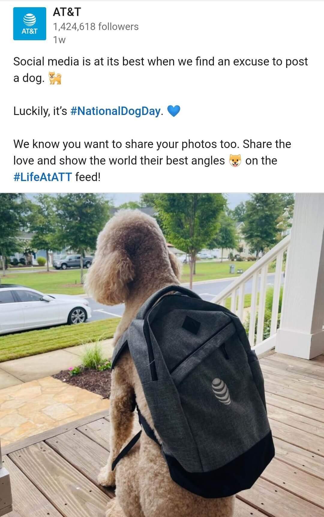 post At&T con perro